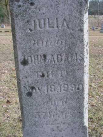 ADAMS, JULIA - Mecosta County, Michigan | JULIA ADAMS - Michigan Gravestone Photos