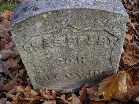 BELBY, CHARLES - Mecosta County, Michigan | CHARLES BELBY - Michigan Gravestone Photos