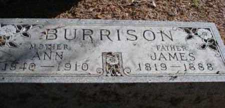 BURRISON, JAMES - Mecosta County, Michigan | JAMES BURRISON - Michigan Gravestone Photos
