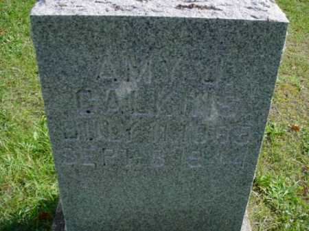 FARR CALKINS, AMY JANE - Mecosta County, Michigan | AMY JANE FARR CALKINS - Michigan Gravestone Photos