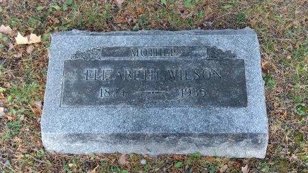 WILSON, ELIZABETH - Saginaw County, Michigan | ELIZABETH WILSON - Michigan Gravestone Photos