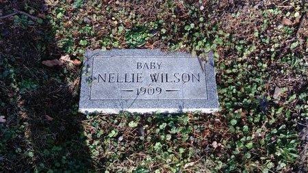 WILSON, NELLIE - Saginaw County, Michigan | NELLIE WILSON - Michigan Gravestone Photos