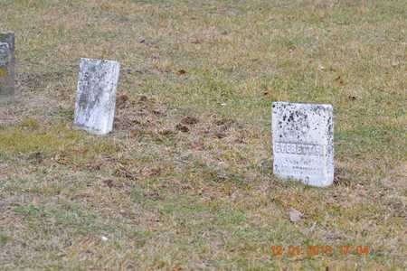 ATCHINSON, EVERETT F. - St. Joseph County, Michigan | EVERETT F. ATCHINSON - Michigan Gravestone Photos