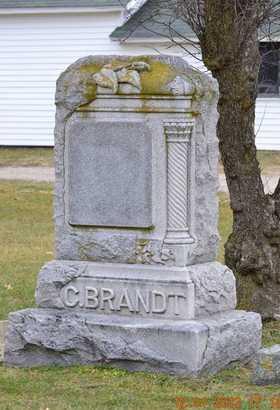 BRANDT, CARL WILHELM - St. Joseph County, Michigan | CARL WILHELM BRANDT - Michigan Gravestone Photos