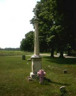 CULBERTSON, FAMILY - St. Joseph County, Michigan | FAMILY CULBERTSON - Michigan Gravestone Photos