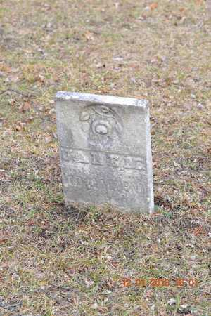 FENN, JANE M. - St. Joseph County, Michigan | JANE M. FENN - Michigan Gravestone Photos