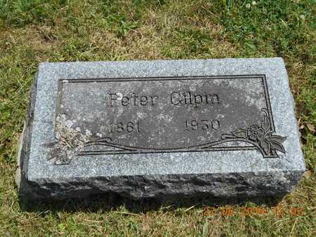 GILPIN, PETER - St. Joseph County, Michigan | PETER GILPIN - Michigan Gravestone Photos