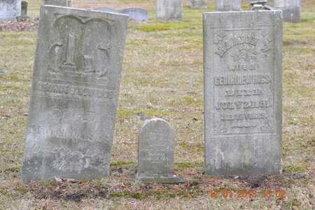 HEWINGS, GEORGE - St. Joseph County, Michigan | GEORGE HEWINGS - Michigan Gravestone Photos