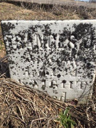 KNIGHT, FRANCES J. - St. Joseph County, Michigan | FRANCES J. KNIGHT - Michigan Gravestone Photos
