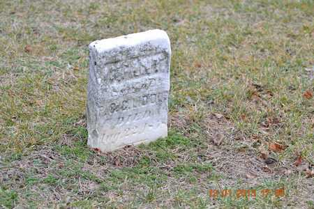 LIDDLE, INFANT - St. Joseph County, Michigan | INFANT LIDDLE - Michigan Gravestone Photos