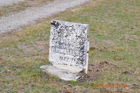 MATHEWS, F.A. - St. Joseph County, Michigan | F.A. MATHEWS - Michigan Gravestone Photos