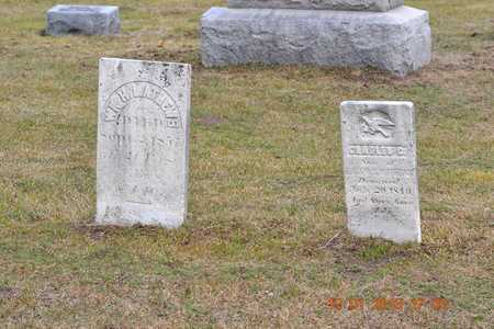 MATHEWS, CHARLES C. - St. Joseph County, Michigan | CHARLES C. MATHEWS - Michigan Gravestone Photos