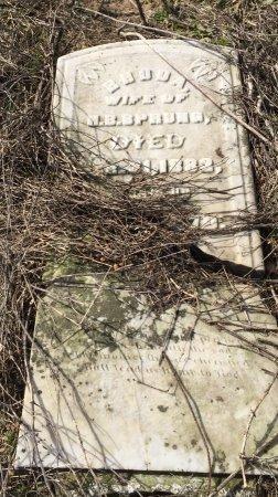 SPRUNG, RHODA - St. Joseph County, Michigan | RHODA SPRUNG - Michigan Gravestone Photos