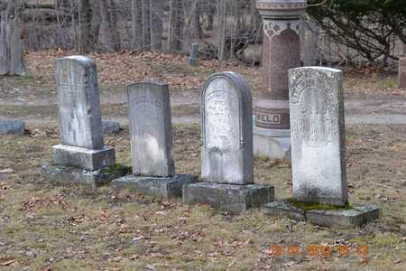 WELD, MARIA - St. Joseph County, Michigan | MARIA WELD - Michigan Gravestone Photos