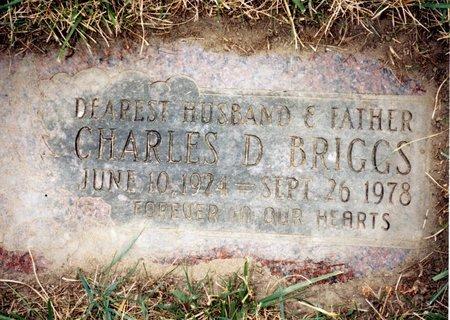 BRIGGS, CHARLES DAYTON - Wayne County, Michigan | CHARLES DAYTON BRIGGS - Michigan Gravestone Photos
