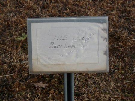 BURCHAM, SUE - Alcorn County, Mississippi | SUE BURCHAM - Mississippi Gravestone Photos