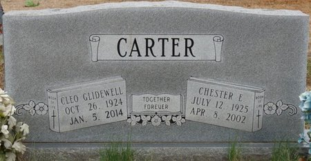 CARTER, CLEO - Alcorn County, Mississippi | CLEO CARTER - Mississippi Gravestone Photos