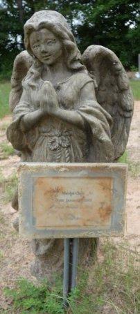 CHASE, MARSHAL - Alcorn County, Mississippi | MARSHAL CHASE - Mississippi Gravestone Photos