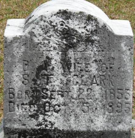CLARK, DISA ANN - Alcorn County, Mississippi | DISA ANN CLARK - Mississippi Gravestone Photos