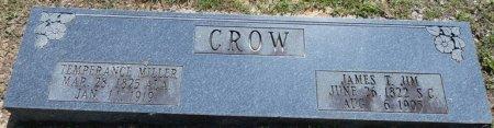 "CROW, TEMPERANCE ""TEMPY"" - Alcorn County, Mississippi | TEMPERANCE ""TEMPY"" CROW - Mississippi Gravestone Photos"