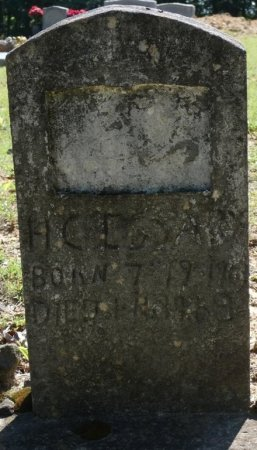 ESSARY, HENRY CLEVELAND - Alcorn County, Mississippi | HENRY CLEVELAND ESSARY - Mississippi Gravestone Photos