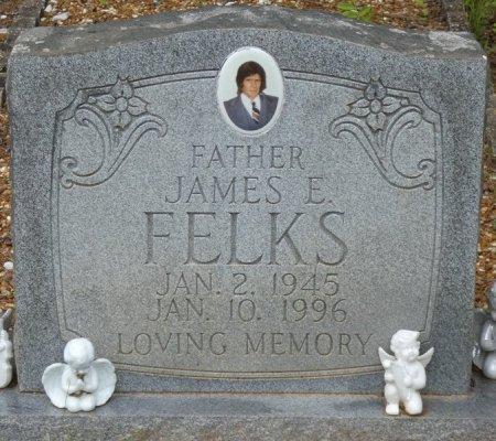 FELKS, JAMES ELBERT - Alcorn County, Mississippi | JAMES ELBERT FELKS - Mississippi Gravestone Photos