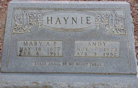 HAYNIE, ANDY - Alcorn County, Mississippi | ANDY HAYNIE - Mississippi Gravestone Photos