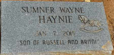 HAYNIE, SUMNER WAYNE - Alcorn County, Mississippi | SUMNER WAYNE HAYNIE - Mississippi Gravestone Photos
