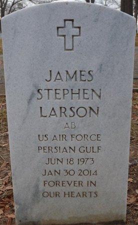 LARSON (VETERAN PERSIAN GULF), JAMES STEPHEN - Alcorn County, Mississippi | JAMES STEPHEN LARSON (VETERAN PERSIAN GULF) - Mississippi Gravestone Photos