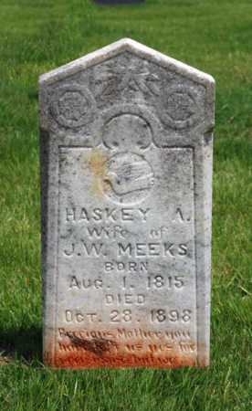 MEEKS, HASKEY A - Alcorn County, Mississippi   HASKEY A MEEKS - Mississippi Gravestone Photos