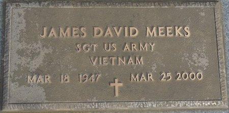 MEEKS (VETERAN VIETNAM), JAMES DAVID - Alcorn County, Mississippi | JAMES DAVID MEEKS (VETERAN VIETNAM) - Mississippi Gravestone Photos