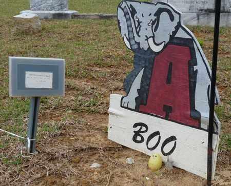 "MORGAN, JIMMY DANIEL ""BOO"" - Alcorn County, Mississippi | JIMMY DANIEL ""BOO"" MORGAN - Mississippi Gravestone Photos"