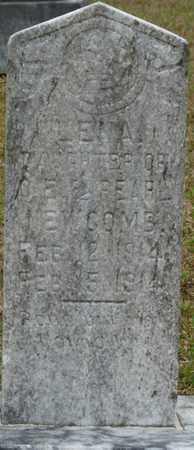 NEWCOMB, LENA - Alcorn County, Mississippi   LENA NEWCOMB - Mississippi Gravestone Photos