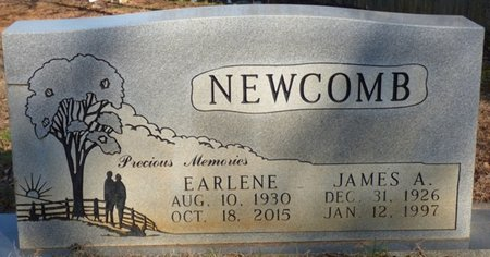 WILKINS NEWCOMB, RUBY EARLENE - Alcorn County, Mississippi | RUBY EARLENE WILKINS NEWCOMB - Mississippi Gravestone Photos