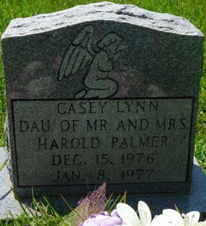 PALMER, CASEY LYNN - Alcorn County, Mississippi   CASEY LYNN PALMER - Mississippi Gravestone Photos