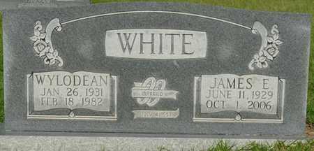 WHITE, JAMES E - Alcorn County, Mississippi | JAMES E WHITE - Mississippi Gravestone Photos