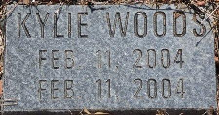 WOODS, KYLIE LYNN - Alcorn County, Mississippi | KYLIE LYNN WOODS - Mississippi Gravestone Photos