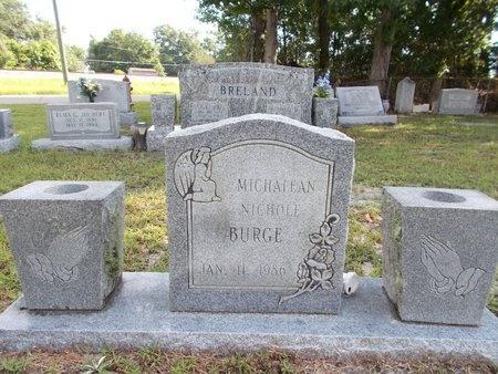 BURGE, MICHALEAN NICHOLE - Hancock County, Mississippi | MICHALEAN NICHOLE BURGE - Mississippi Gravestone Photos