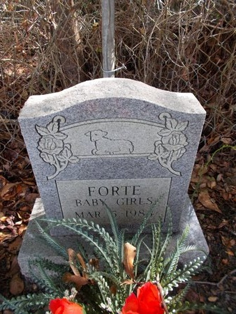 FORTE, BABY GIRLS - Hancock County, Mississippi | BABY GIRLS FORTE - Mississippi Gravestone Photos