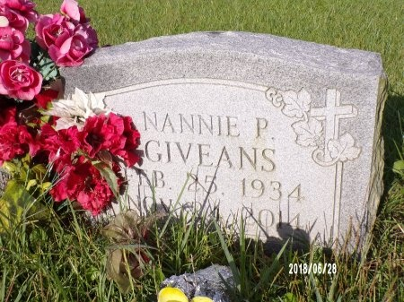 GIVEANS, NANNIE - Hancock County, Mississippi | NANNIE GIVEANS - Mississippi Gravestone Photos