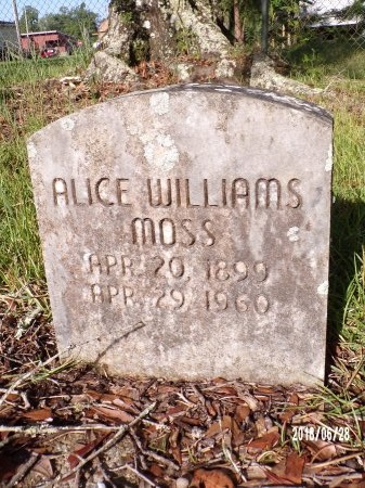 WILLIAMS MOSS, ALICE - Hancock County, Mississippi | ALICE WILLIAMS MOSS - Mississippi Gravestone Photos