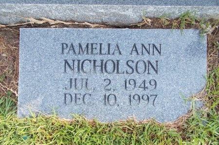 NICHOLSON, PAMELIA ANN - Hancock County, Mississippi | PAMELIA ANN NICHOLSON - Mississippi Gravestone Photos
