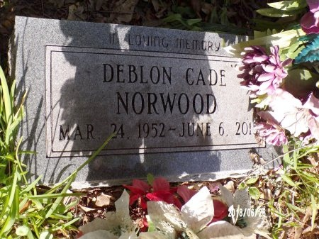 NORWOOD, DEBLON CADE - Hancock County, Mississippi | DEBLON CADE NORWOOD - Mississippi Gravestone Photos