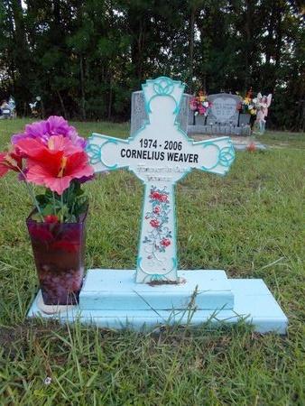 WEAVER, CORNELIUS NAPOLEON - Hancock County, Mississippi   CORNELIUS NAPOLEON WEAVER - Mississippi Gravestone Photos