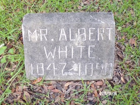 WHITE, ALBERT - Hancock County, Mississippi | ALBERT WHITE - Mississippi Gravestone Photos