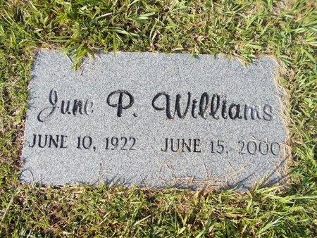 WILLIAMS, JUNE P - Hancock County, Mississippi | JUNE P WILLIAMS - Mississippi Gravestone Photos