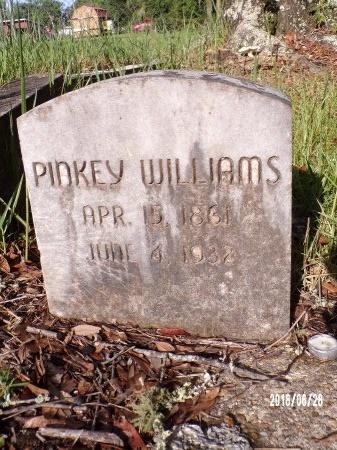 WILLIAMS, PINKEY - Hancock County, Mississippi | PINKEY WILLIAMS - Mississippi Gravestone Photos