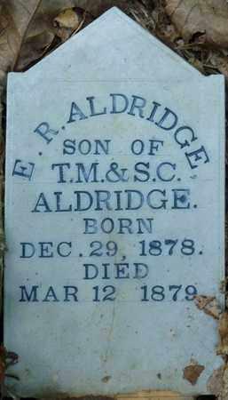 ALDRIDGE, E.R. - Itawamba County, Mississippi | E.R. ALDRIDGE - Mississippi Gravestone Photos