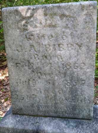 BIBBY, SARAH - Itawamba County, Mississippi | SARAH BIBBY - Mississippi Gravestone Photos