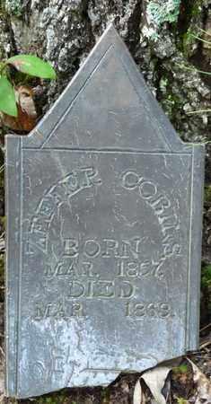 COBINS, ZEFTER - Itawamba County, Mississippi   ZEFTER COBINS - Mississippi Gravestone Photos